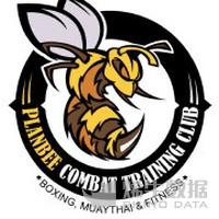 Plan Bee Combat